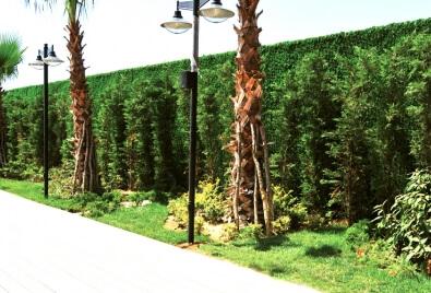 Application de mur de jardin