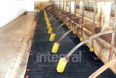 Application de plancher de l'abri d'animal